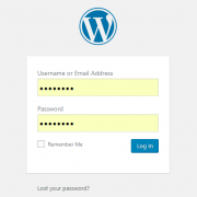 WordPress Login Panel