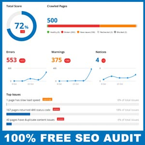 Get your free SEO audit in seconds