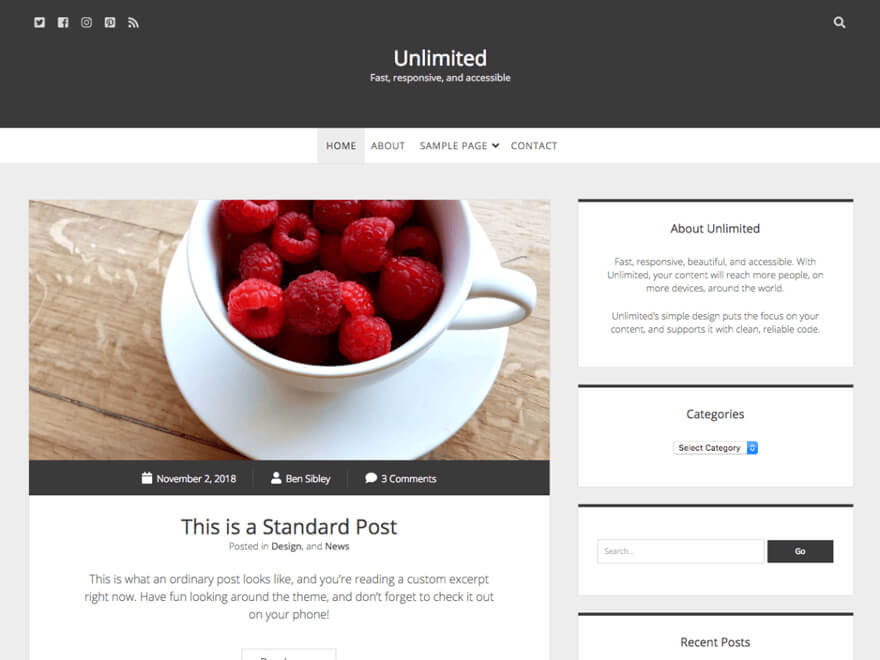 Unlimited ADA WordPress Theme